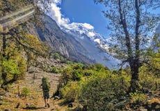Trekking naar de bergen stock afbeelding