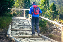 Trekking nas montanhas Imagens de Stock