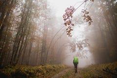 Trekking nebbioso in montagne fotografia stock libera da diritti