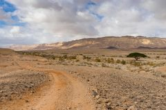 Trekking in Negev dramatic stone desert, Israel. View of ramon crater desert of southern israel during hiking Royalty Free Stock Image