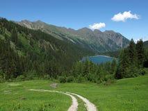 Trekking nel Bernese Oberland Immagine Stock