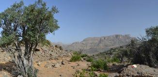 Trekking nell'Oman Fotografia Stock Libera da Diritti
