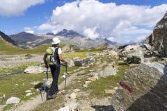 Trekking nelle alpi Immagine Stock