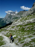 Trekking nelle alpi della Svizzera Immagini Stock