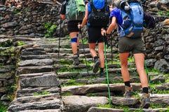 Trekking nepal Fotografering för Bildbyråer