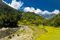 Trekking in Nepal Royalty Free Stock Images