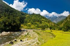 Trekking in Nepal Lizenzfreie Stockbilder