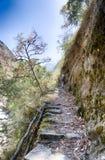 Nepal trekking in Langtang valley Royalty Free Stock Images