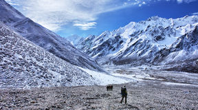 Trekking in Nepal, Langtang valley Stock Photos