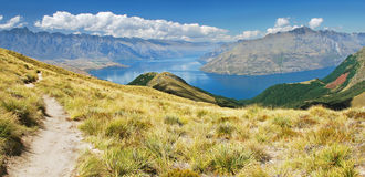 Trekking New Zealand Stock Photography