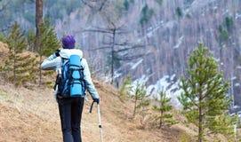 Trekking och gå i träna Fotografering för Bildbyråer