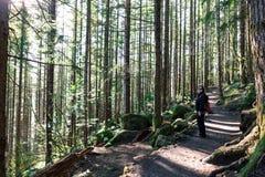 Trekking på Seattle Washington Rattlesnake Ledge Trail Arkivfoton