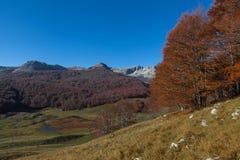 Trekking Parco Nazionale D'Abruzzo Arkivfoton