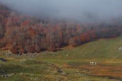 Trekking Parco Nazionale D'Abruzzo Arkivbild