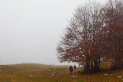 Trekking Parco Nazionale D'Abruzzo Royalty Free Stock Photo