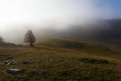 Trekking Parco Nazionale D'Abruzzo Stock Photos