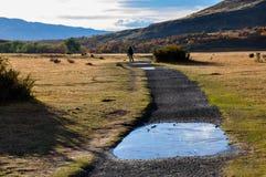 Trekking in Parque Nacional Torres del Paine, Cile Fotografia Stock