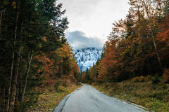 Trekking path in an autumn day in the alps Royalty Free Stock Photos