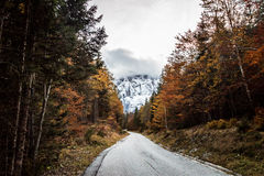 Trekking path in an autumn day in the alps Stock Photos