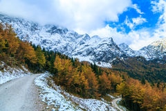 Trekking path in an autumn day in the alps Royalty Free Stock Image