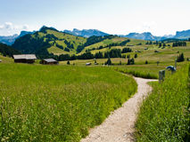 Trekking path in Italian Alps. Landscape of Italian Alps with thick green grass, trekking path and cottages in the distance Stock Photos