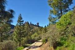 Trekking path Stock Photo