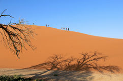 Trekking piasek diunę w Namib pustyni Obrazy Royalty Free