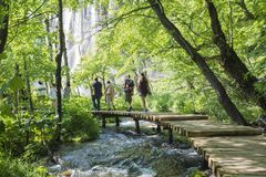 Trekking in the Plitvice national park Royalty Free Stock Photography