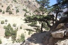 Trekking Road. Royalty Free Stock Images