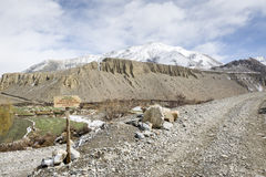 Trekking road in Himalaya Stock Images