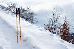 Trekking słupy w śniegu Obraz Stock