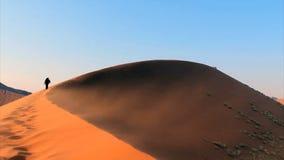 Trekking a sand dune. In the Namib Desert, Sossusvlei, Namibia stock footage