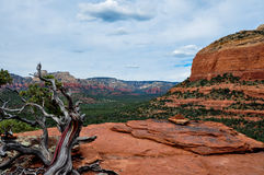 Trekking in Sedona, Arizona, U.S.A. Fotografia Stock