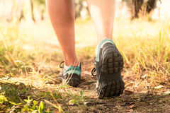 Trekking shoes, hiking or running. In a woods concept royalty free stock images