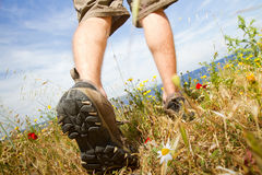 Trekking shoes. Young tourist backpacker walking through green meadow in trekking shoes stock images