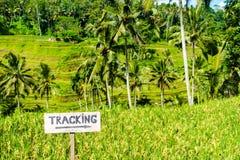 Trekking sign. At Tegallalang rice terraces near Ubud, Bali, Indonesia Stock Images