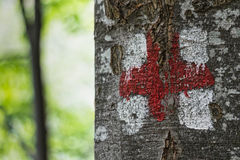 Trekking sign on tree Stock Photography
