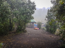 Trekking slinga av den Acatenango vulkan, Guatemala Royaltyfria Foton