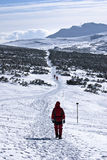 Trekking in snow Royalty Free Stock Photography