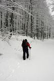 Trekking in the snow royalty free stock image