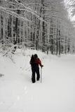 Trekking in the snow. Alpinist in Sneznik mountain in Croatia. Snow trekking Royalty Free Stock Image