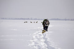 Trekking at snowy plain Stock Images