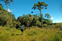 Trekking in southern Brazil Royalty Free Stock Photo