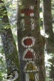 Trekking tecken för berg Royaltyfri Bild