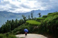 Trekking till och med berg i Vietnam Arkivfoton