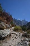 Trekking trail between Gangotri and Gaumukh. Indian Himalayas stock photography