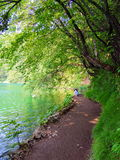 Trekking Trail inside Plitvice National Park Stock Images