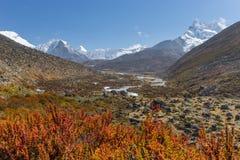 Trekking trail to Chukung village, Everest region Stock Photo
