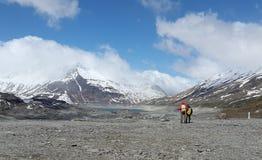 Trekking turistico nei picchi di montagna Fotografie Stock Libere da Diritti