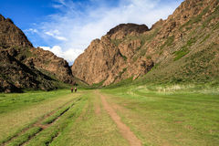Trekking in Valley of flowers in Mongolia Stock Photo